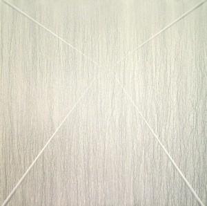 07 CARLO BERNARDINI, Superficie virtuale con linee di luce:ombra 1996, pigmenti in polvere acrilici bianchi e fosforo su tavola, cm h 175x175 (in luce reale).